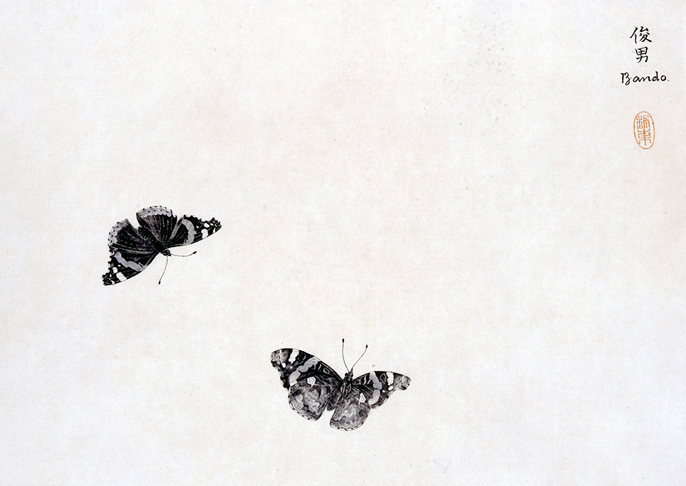 Toshio Bando - Les papillons Encre sur papier Coll. part © Jacques Boutersky, Paris